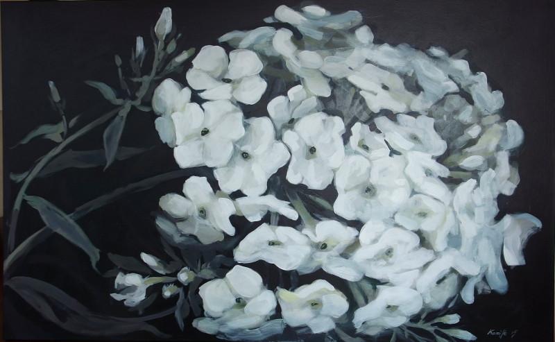 Black&White Phlox painting