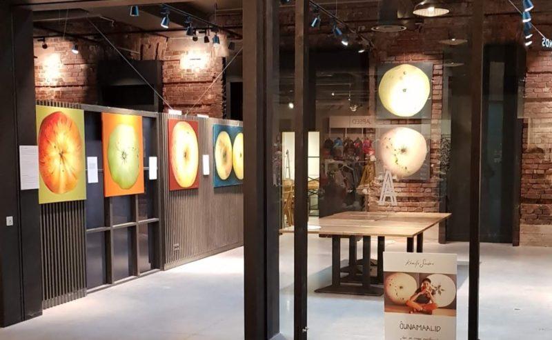 Õunamaalide näitus