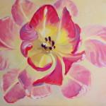 Kamille Saabre Pink Paintings