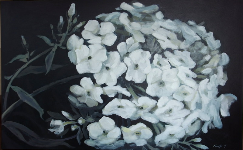 Black&White Phlox painting