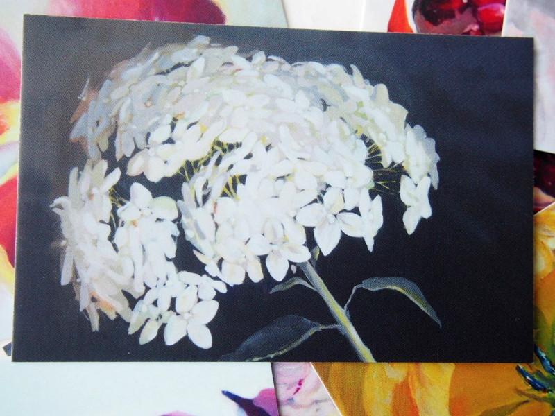 minikaart lillepood