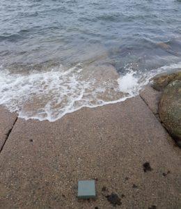 merevärvid